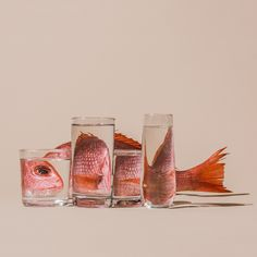 Distorted Fruit and Vegetables Through Water-Filled Glasses