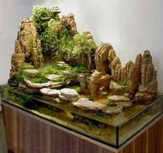 Home Aquarium Ideas: The Aquarium Buyers Guide Paludarium with Large Rock Feature Aquarium Design, Aquarium Terrarium, Aquarium Fish, Biotope Aquarium, Reptile Terrarium, Vivarium, Aquascaping, Conception Aquarium, Aquariums