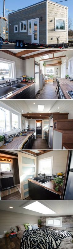 The Jack Sparrow by Rewild Homes