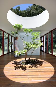 Gallery featuring images of the Mind-Blowing Casa Chinkara Home By Solis Colomer Arquitectos, a contemporary project featuring an art gallery and sprawling open plan design. Patio Interior, Interior And Exterior, Interior Design, Design Design, Design Ideas, Indoor Trees, Plants Indoor, Art And Architecture, Futuristic Architecture