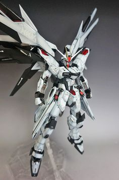 Gundam Family: MG 1/100 Freedom Gundam 2.0 Painted Build