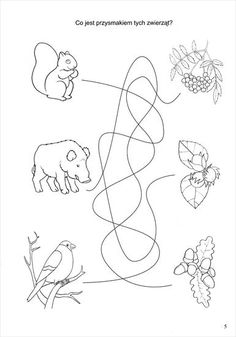 Emotions Preschool, Worksheets, Workshop, Activities, Offices, Woodland Forest, Manualidades, Kid, Paper