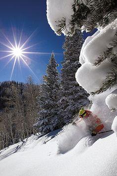 On the snow ~ Utah has great skiing!