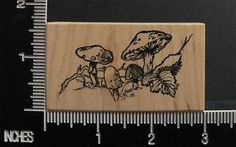Mushrooms Toadstools Bare Tree Branch Rubber Stamp by Toybox | eBay