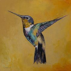 Hummingbird paintings In oils.  By Michael Creese. Prints of t his artwork is available at society6, just click through to buy.
