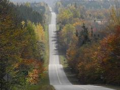 On my way to Charlottetown one fall day <3 Love this Island!