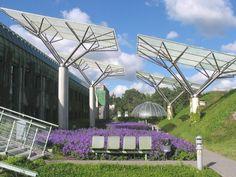 University of Warsaw roof gardens