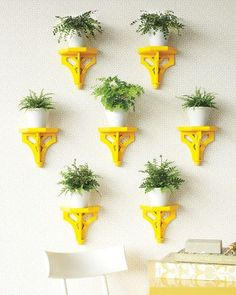 plant-brackets-yellow-0911mld107506.jpg