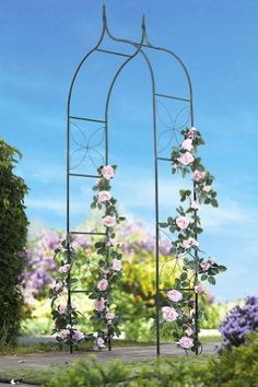 "Green Metal Outdoor Garden Arched Trellis By Collections Etc by Collections. $24.99. Provides climbing vines and other plants with support. Impressively scaled trellis with a peaked arched top. Simply push the four foundation stakes into the ground to install. Measures 35 1/2""L x 14 1/2""W x 93 1/2""H. Great for so many varieties of vines plants. Turn your garden into a neighborhood showplace by simply adding a fanciful architectural feature. Impressively scaled trellis with a..."