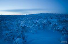 'Night Fall' – Saariselkä, Lapland, Finland – February 18th, 2011.  Cabins and activities in Saariselkä http://www.saariselka.com