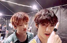 Taehyung, Jungkook V, Yoongi, Bts Bangtan Boy, Bts Boys, Vkook Fanart, Vkook Gif, Dove Cameron, Bts Maknae Line