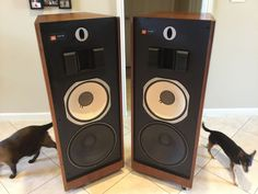 Speakers are both working properly.Great look and sounds.Brilliance and presence knobs are both good. Pickup only. | eBay!