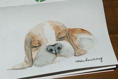 Meine Sunny vor knapp 12 Jahren. Sie war und ist so niedlich. Die Ohren waren schon als Welpe, soooo lang, dass sie immer darüber stolperte. 😍 www.rauschsinnig.de Aquarellzeichnung auf Papier. #watercolour #aquarelle #dog #beaglepuppies #beagles #lovedogs #lovemydog #puppies #zeichnung #illustration #cutestdog #drawinganimals #drawing #drawingoftheday #sketchingoftheday #drawtheday  #sketchbook #skizzenbuch