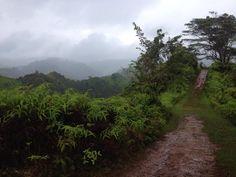 Big Island of Hawaii....  On my wish list of runs, this very trail.