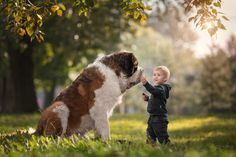 Cute Photos of Little Kids and Big Dogs