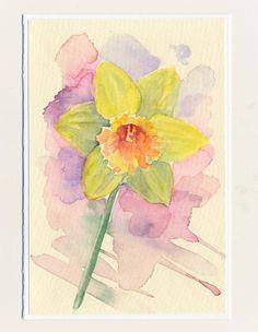 Ručne maľovaná pohľadnica - Narcis watercolor, daffodil, flower