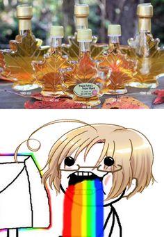 HAHAHAHAHA Canada + maple syrup = true love~ Hetalia
