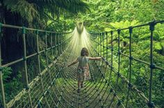 Take the hidden rope bridge over the trees of The Lost Gardens of Heligan. #Cornwall #Heligan #Family