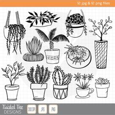 12 hand drawn house plant doodles clipart for diy invitations screpbooking cactus fern succulent potted plants succulent wall art canvas painting succulent print wall decor botanical print succulent poster wall hanging eucalyptus print cactus art Doodle Drawings, Cartoon Drawings, Doodle Art, Cactus Drawing, Plant Drawing, Succulent Wall Art, Plant Tattoo, Drawing Clipart, Face Painting Designs