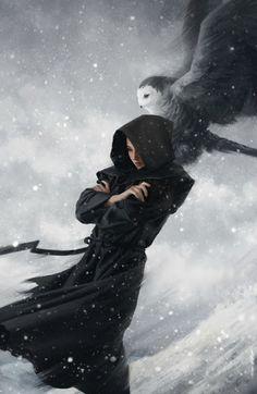 Совушки/Owls – Сообщество – Google+