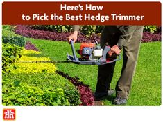 Properly trimmed hedges and bushes are essential to maintaining the curb appeal of your home. Best Hedge Trimmer, Gardening Tools, Hedges, Curb Appeal, Good Things, Living Fence, Shrubs, Sidewalk, Natural Privacy Fences