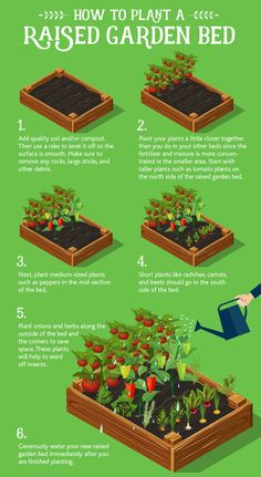 Learn how to plant raised garden beds in this blog post. Also learn the benefits of raised bed gardening and get helpful tips.