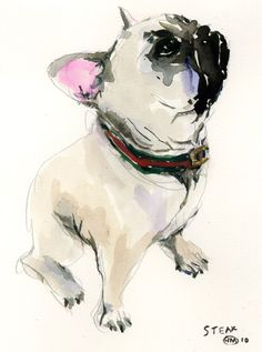 If i am to EVER own another dog in my life a french bulldog will be it. Love'em
