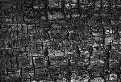 Burned_Cedar_Plank_by_snakstock.jpg (2021×1371)