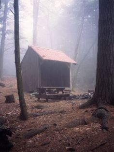 Appalachian Trail shelter - Once you strip life to the essentials -- food, water, shelter -- you learn what you really need. The rest is just clutter.