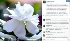 Vemale.com - Bu Ani menuliskan permohonan maafnya kepada followernya melalui sebuah foto.