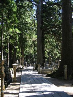Ancient sites like Okuno-in Temple Path in Kyoto and Buddhist monks in Mount Koya, Japan