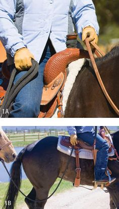 Step #1: Learn the Ropes - Ponying a young horse