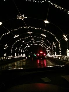 With the Midlands largest light show, a stroll along the boardwalk with a laser light show, and a winter wonder ride, you can enjoy the holidays at Saluda Shoals Park in Columbia, SC