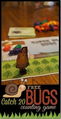 FREE Catch 20 Bugs C