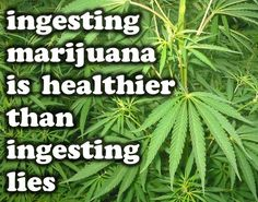 Toke Signals with Steve Elliott | Worth Repeating: Medical Marijuana Doesn't Fit On Present Drug Schedule