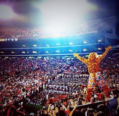 best mascot ever!!!   #Aubie     For Awesome Sports Stories and Audio Podcast, Visit our Blog at www.RollTideWarEagle.com
