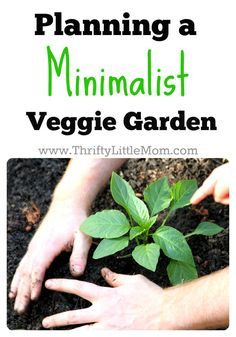Minimalist Veggie Garden.  Spring will be here before you know it!  Are you already planning out what you're going to grow?