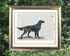 Setter dog and tennis ball on antique book page. 212 year old paper. Vintage text art.