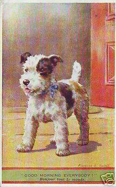 Dog postcard Drawing: foxterrier p33253