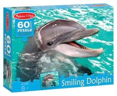 laughing dolphin - Google Search
