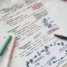 The Pink Studyblr School Organization Notes, Study Organization, Cute Notes, Pretty Notes, College Notes, Class Notes, School Study Tips, Study Hard, Study Journal