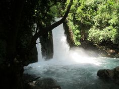 Banias Waterfall in the North