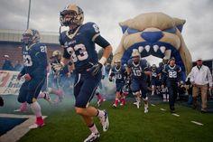 Whooop whooooop go BOBCATS!¡! MSU Montana state Bobcats.