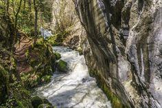 Areuse Schlucht - Frühlingswanderung im Jura - Schweiz Waterfall, Plants, Outdoor, Dance, Law School, Destinations, Travel, Outdoors, Dancing