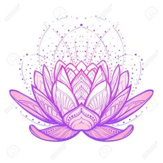 Lotus Flower. Intricate Stylized Linear Drawing Isolated On White.. Royalty Free Cliparts, Vectors, And Stock Illustration. Image 72434605.