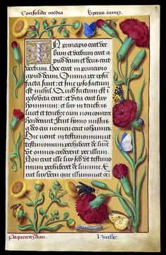 """heaveninawildflower:  """" Page from the beautiful iIluminated manuscript (between circa 1503 and circa 1508) of the Grandes Heures of Anne of Brittany Queen of France (1477-1514). Illuminated by Jean Bourdichon (1457–1521).  Bibliothèque nationale de..."""