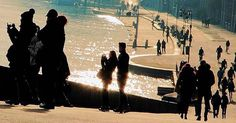 P H O T O   @suonoindo  L O C A T I O N   serie: autori piemontesi  S E L E C T E D   @giuliano_abate & @emil_io F E A U T U R E D  T A G   #ig_piemonte #piemonte  #insta_international #natgeotravel  #citybestpics #globe_travel_ #luxuryworldtraveler #worldtravelpics #instaitalia #awesomeearth #italy_vacations #wonderful_places #beautifuldestinations #bestvacations #worldplaces #beautifulplanett #nakedplanet #garden  #remarkableplaces #visitpics #earthpix #discoverearth #hiptour by…