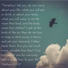 """""""Therefore I tell you, do not worry… Matthew 6:26"""