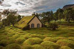 malformalady: Turf church Hofskirkja, Iceland. Little church made from wood and peat (turf). Is one of the last peat churches in Iceland. T...