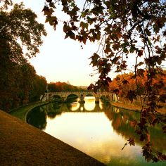 The Tiber River at dusk is beautiful